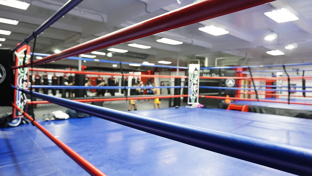 Muay Thai and Boxing Ring